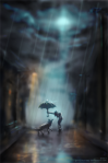 one rainy wolfstime